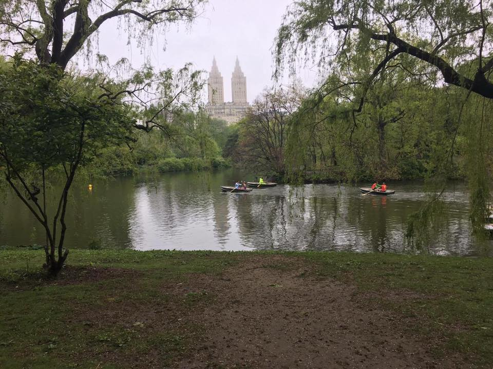 Central Park was beautiful despite the gloomy conditions.
